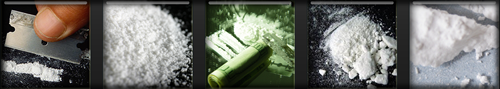 Cocaine Pictures - Images and Photos of Cocaine